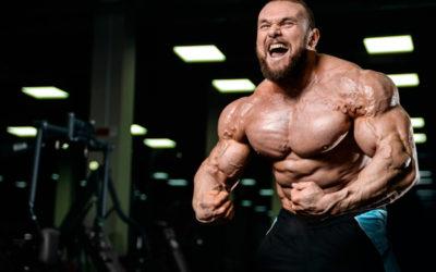 Proteine e bodybuilding
